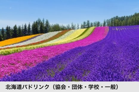 北海道バドリンク(協会・団体・学校・一般)