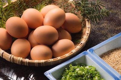ゆで卵からタンパク質を摂取